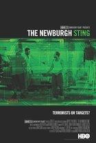 Newburgh Sting