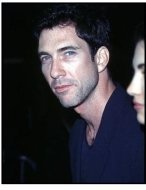 """Dylan McDermott at the """"Air Force One"""" Premiere"""