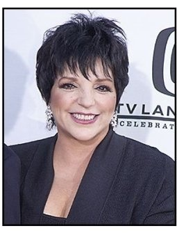 Liza Minnelli at the 2004 TV Land Awards