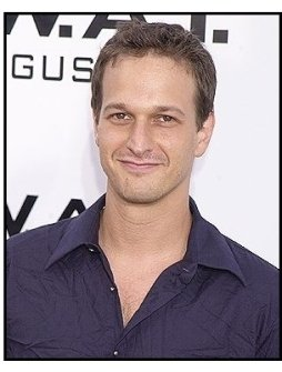 """Josh Charles at the """"S.W.A.T."""" premiere"""