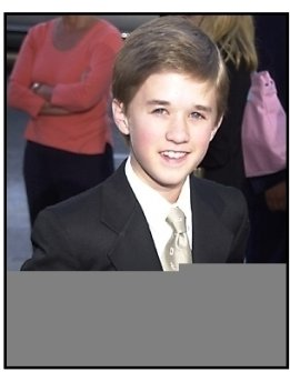 Haley Joel Osment at the A.I. Artificial Intelligence premiere